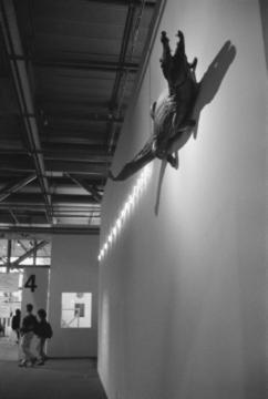 Photographie d'accrochage réalisée lors de « Manifeste. Une histoire parallèle (1960-1990) ». Photographie de Jacques Faujour. Tirage numérique d'après la planche-contact 20.87, n°2 , 1993, Fonds Muséographie des expositions temporaires du MNAM, Bibliothèque Kandinsky, MNAM-CCI / Centre Pompidou